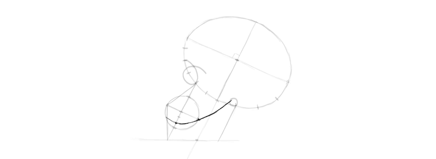 drawing jaw curve