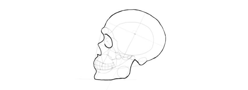 drawing skull eye socket outline