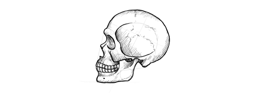 drawing skull cross hatching drawing skull shading drawing skull finished