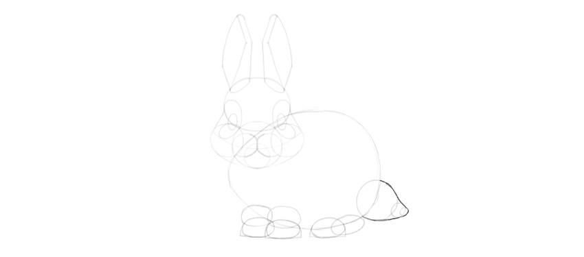 bunny tail outline