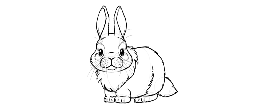 bunny darker outline