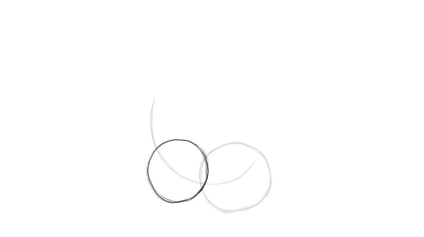 sloth body circles