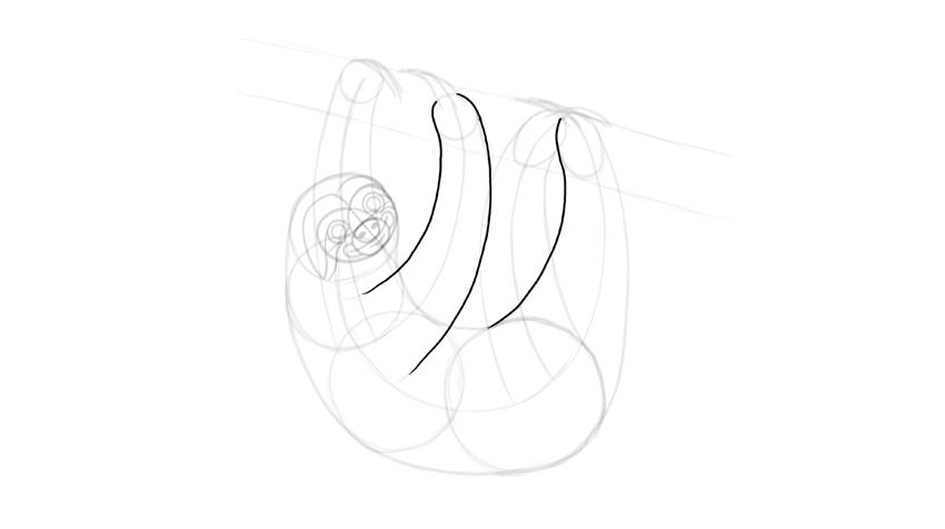 sloth limbs outline