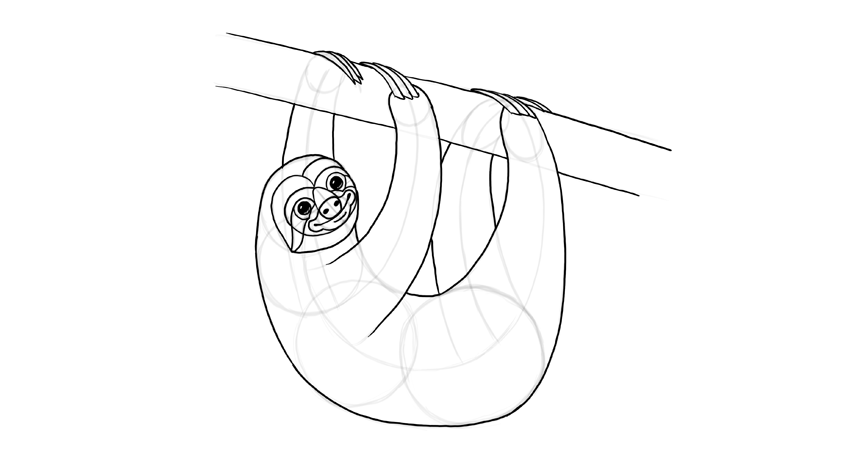 sloth body outline sloth branch outline sloth full outline