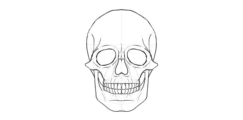 How To Draw A Skull By Tutsplus Design