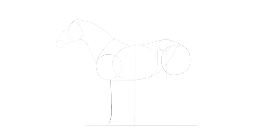 horse drawing foreleg