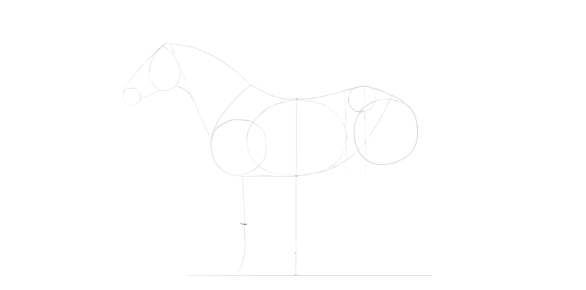horse drawing foreleg center