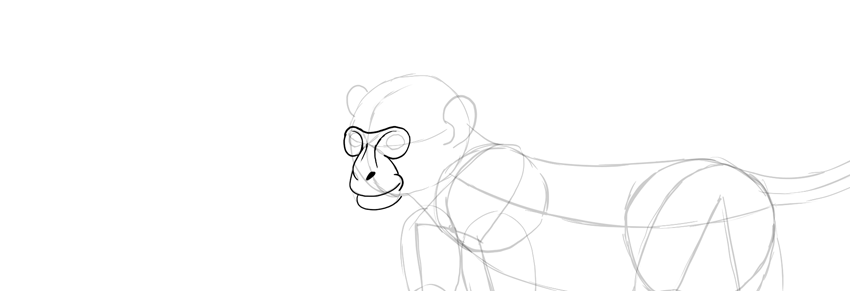 monkey drawing smile detailed