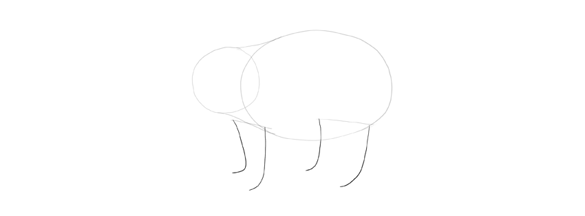 panda drawing legs length