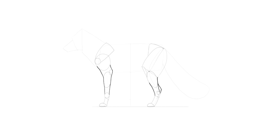 fox legs outline drawing