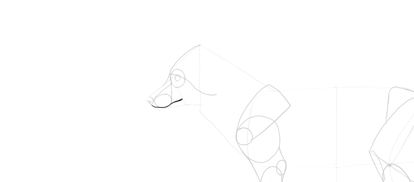 fox lips drawing