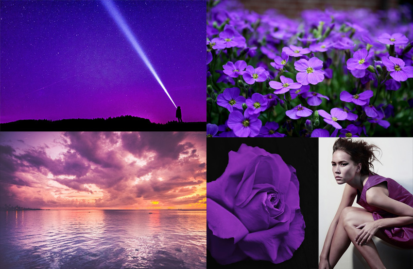 the meaning of purple
