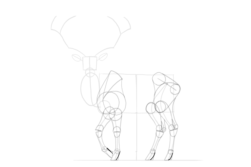 deer hooves detailed shape