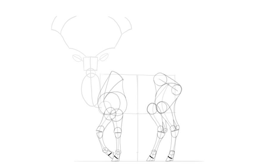 deer hooves shape complete