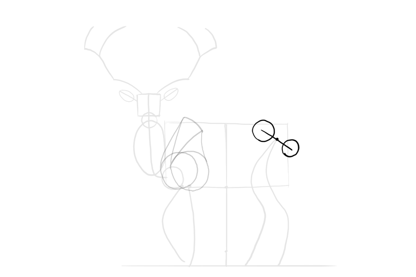 deer simplified hips