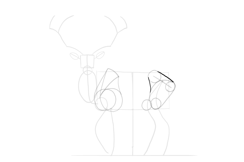 deer complete thigh shape