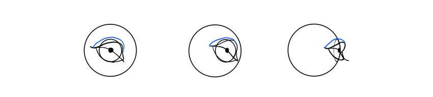 lion upper eyelid rotation