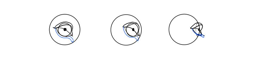 lion eye corner dark rotation