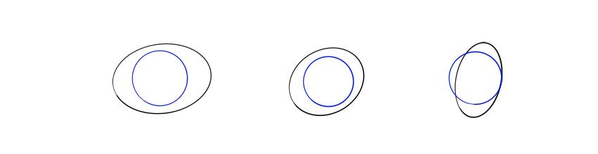 lizard eyeball in perspective