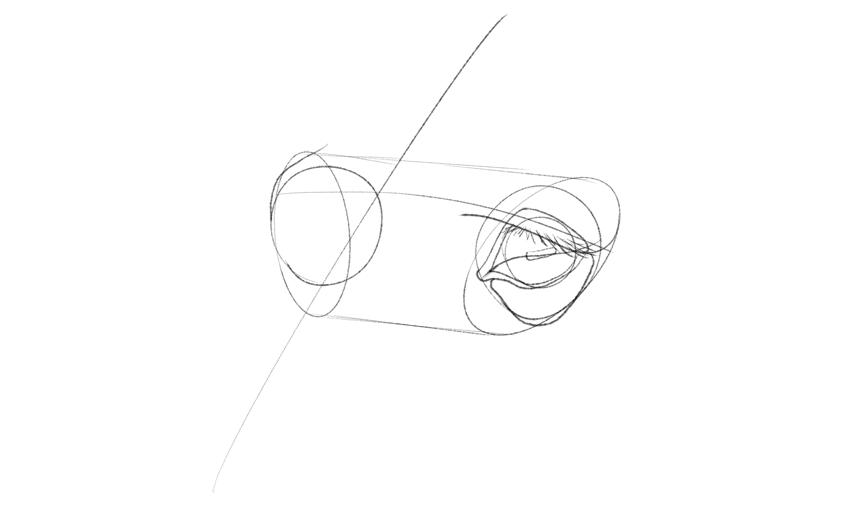 horse eyelashes drawing