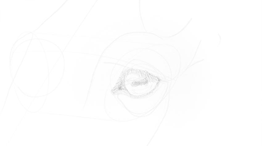 horse eye basic shading
