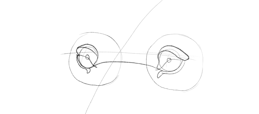 lion eyelid lower corner drawing