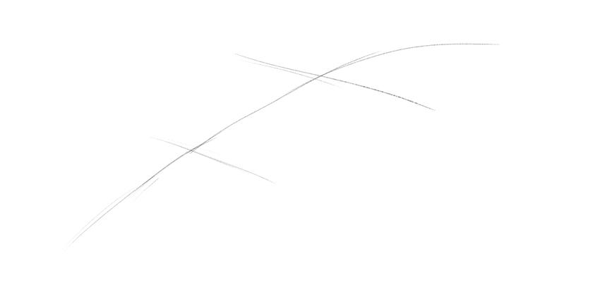 lizard head drawing beginning