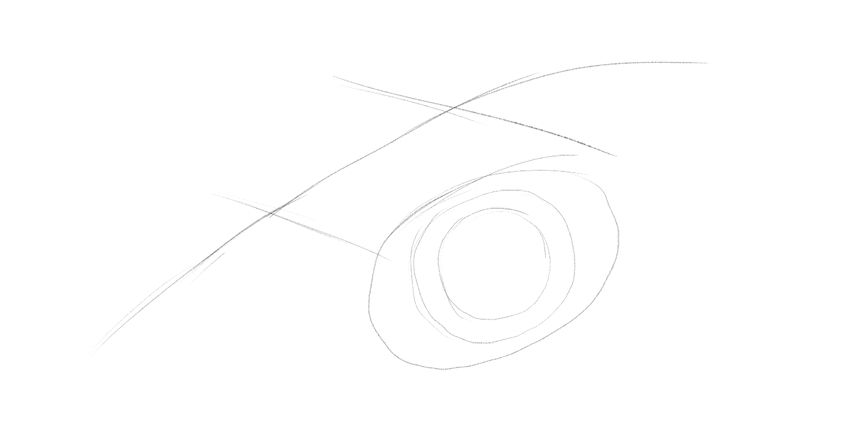 lizard pupil drawing