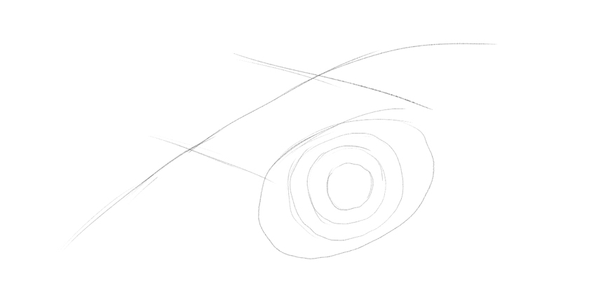 lizard pupil shape drawing