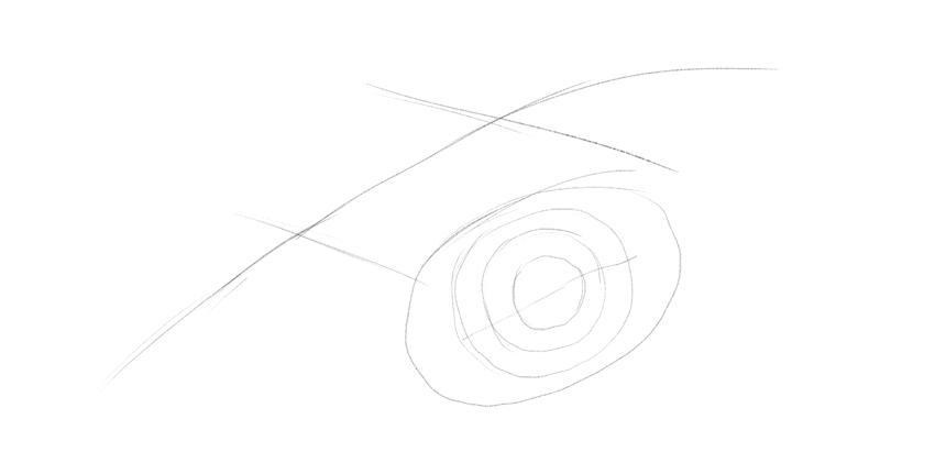 lizard eye guide lines drawing