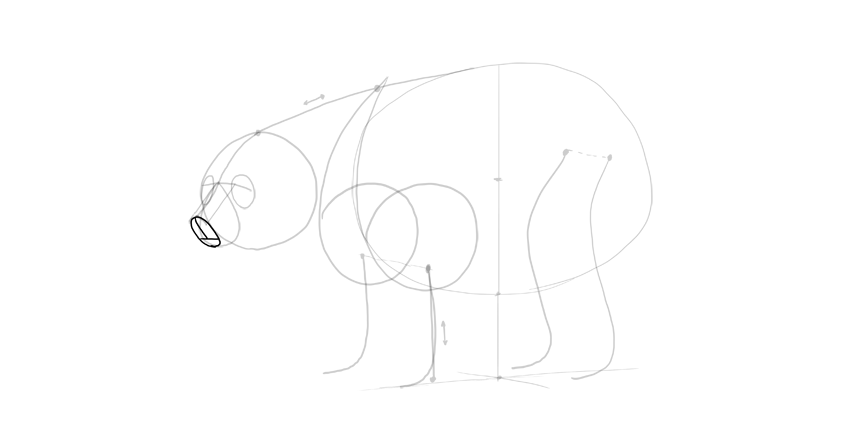 bear drawing 3d muzzle