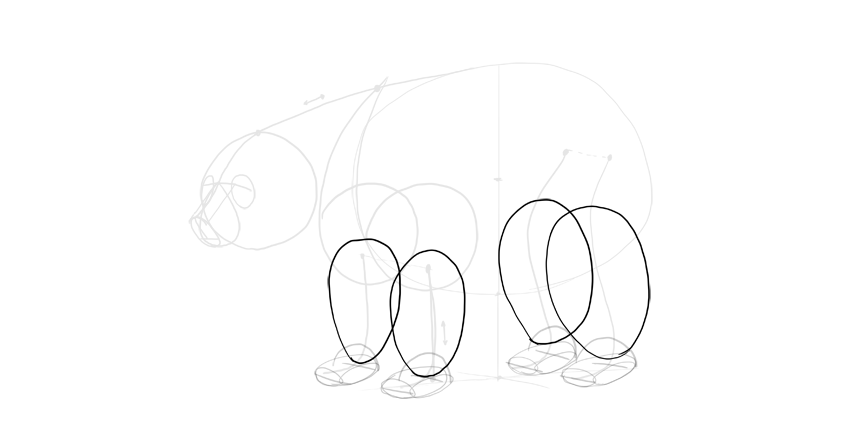 bear drawing legs outline