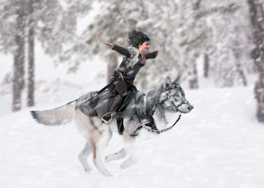 create a fantasy wolf rider photo manipulation