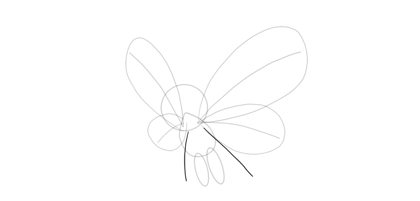 draw lower wings butterfree