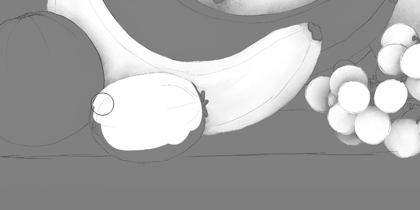 kiwi in ambient occlusion