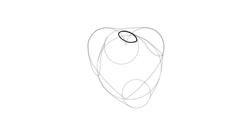dibujar la base de la arteria