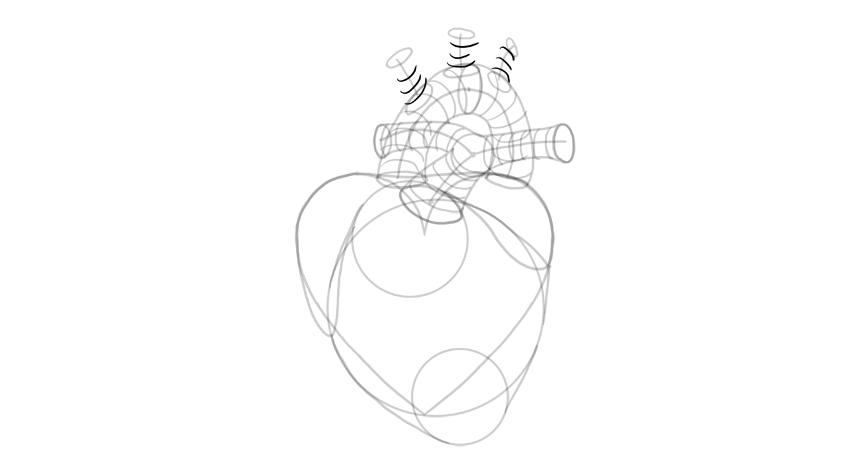 dibujar la forma 3d de la ramificación de la aorta