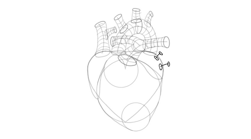bosquejo de las venas pulmonares
