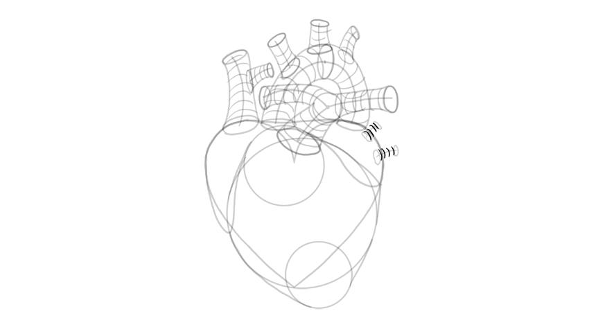 Boceto de forma 3d de las venas pulmonares