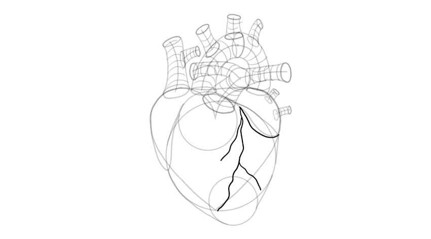 dibujar pequeñas arterias