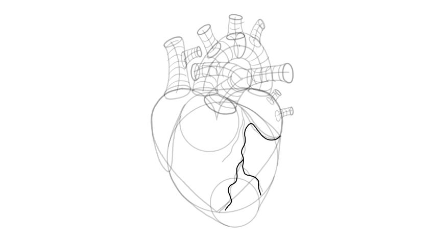 how to draw a heart Respiratory System Diagram draw small arteries draw small veins
