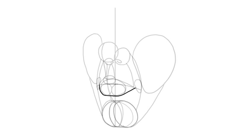 lower lip shape in perspective