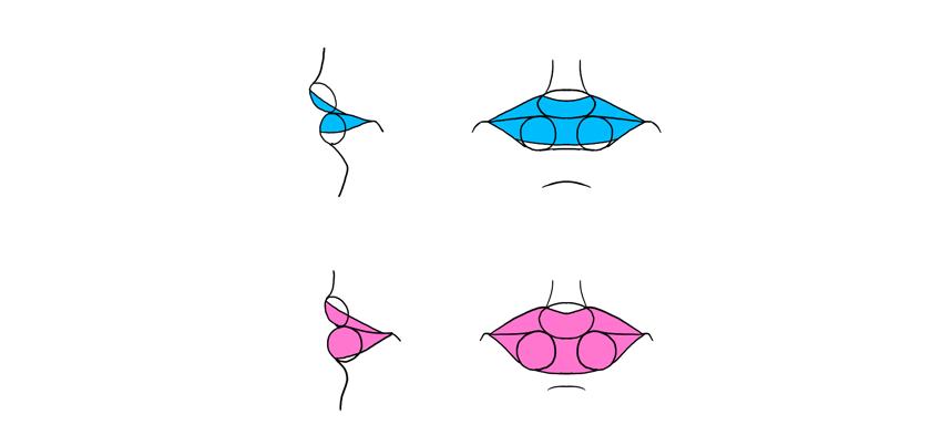 masculine and feminine lips
