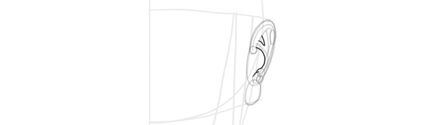 ear front view antihelix outline