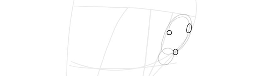 ear in perspective helix width