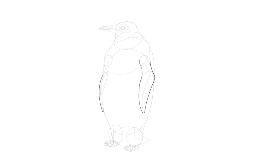 outline oenguin wings