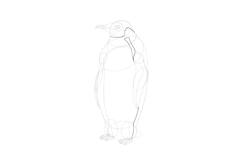 draw emperor penguin pattern