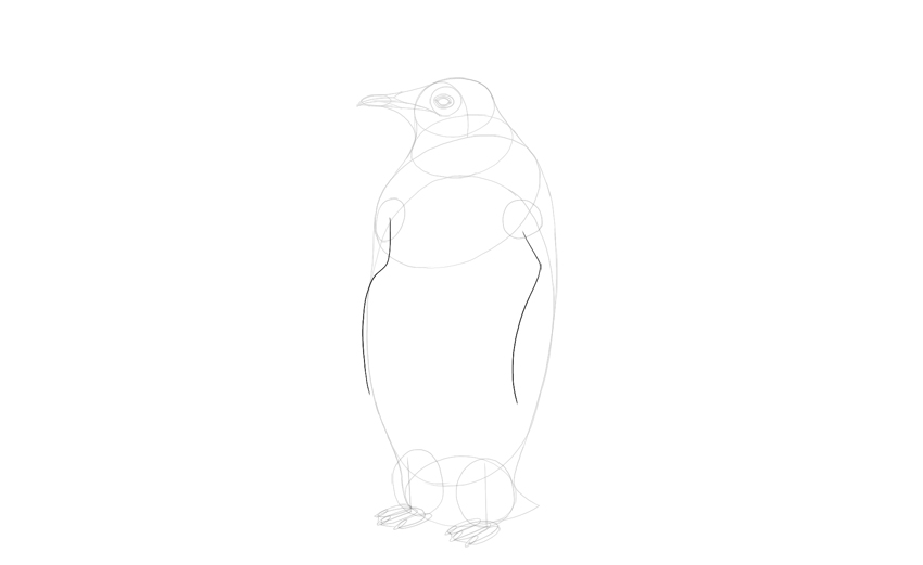sketch penguin wings