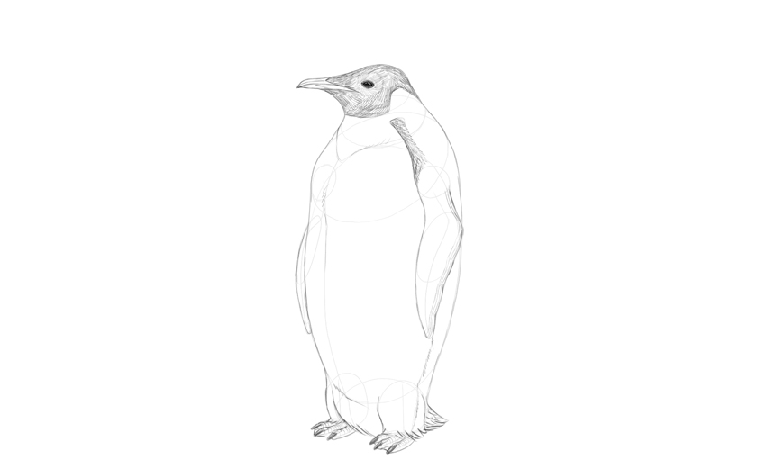 shade penguin head