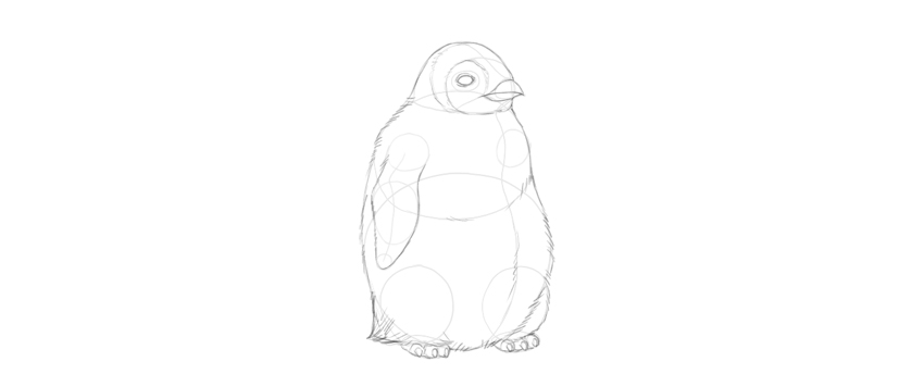 outline baby penguin